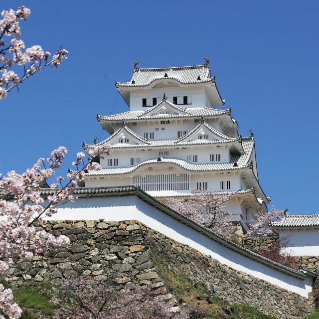 【姫路城入城券つき】美しい白鷺城を見に行こう♪