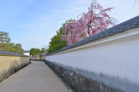 白壁のある風景